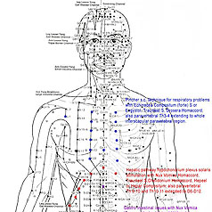 EFT and Related Acupuncture Points