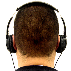 FREE Wisdom Between Your Ears